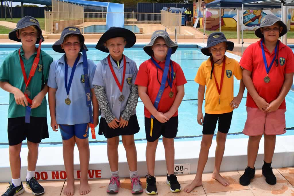 Primary Inter-house Swimming Carnival