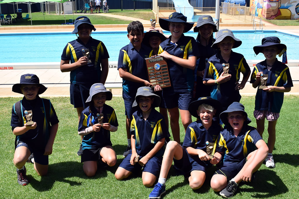 Primary Interschool Swimming Carnival